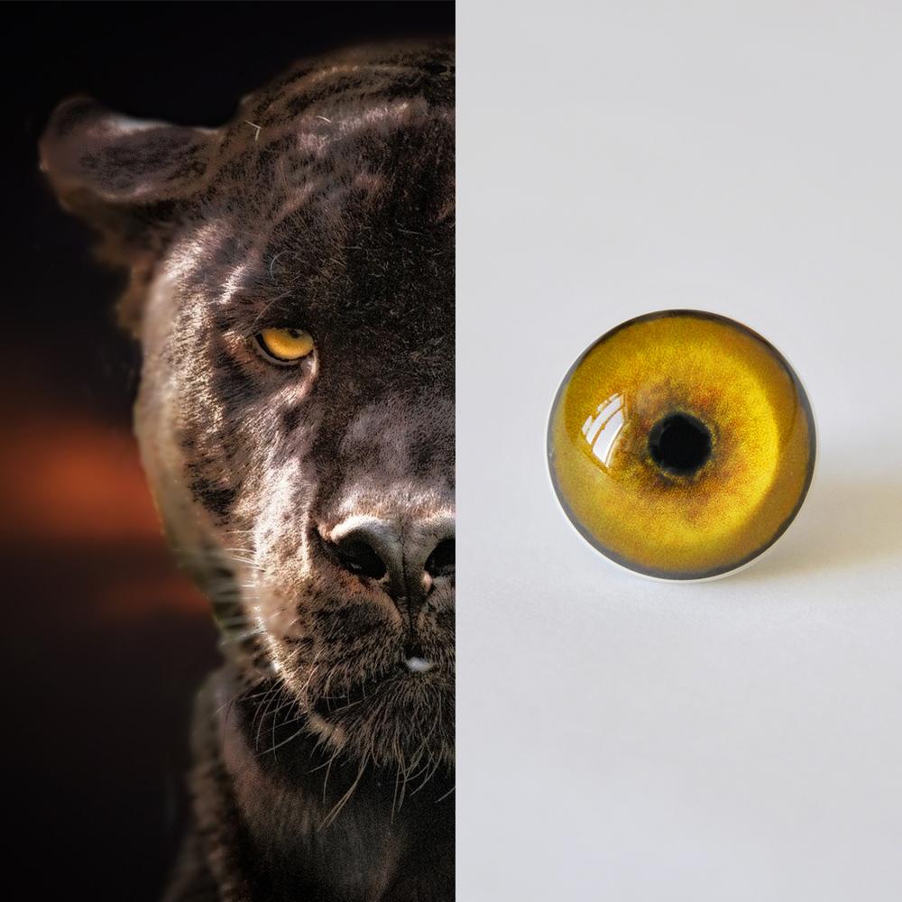 Panther_SM.jpg