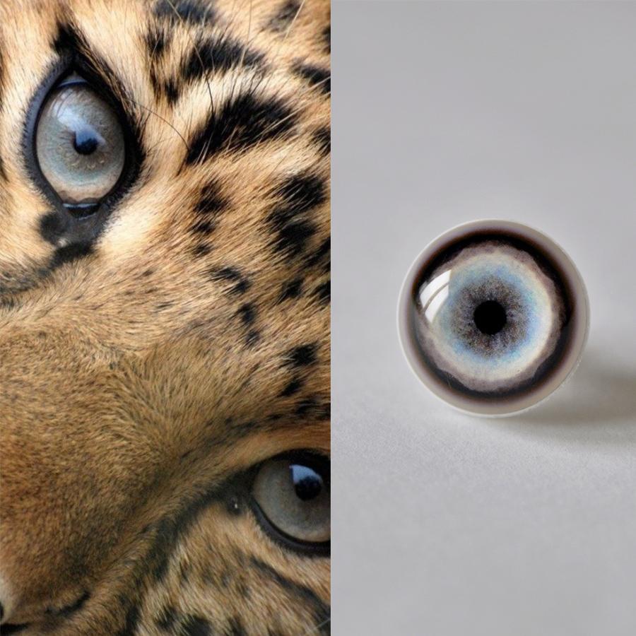 Jaguar_1_SM.jpg