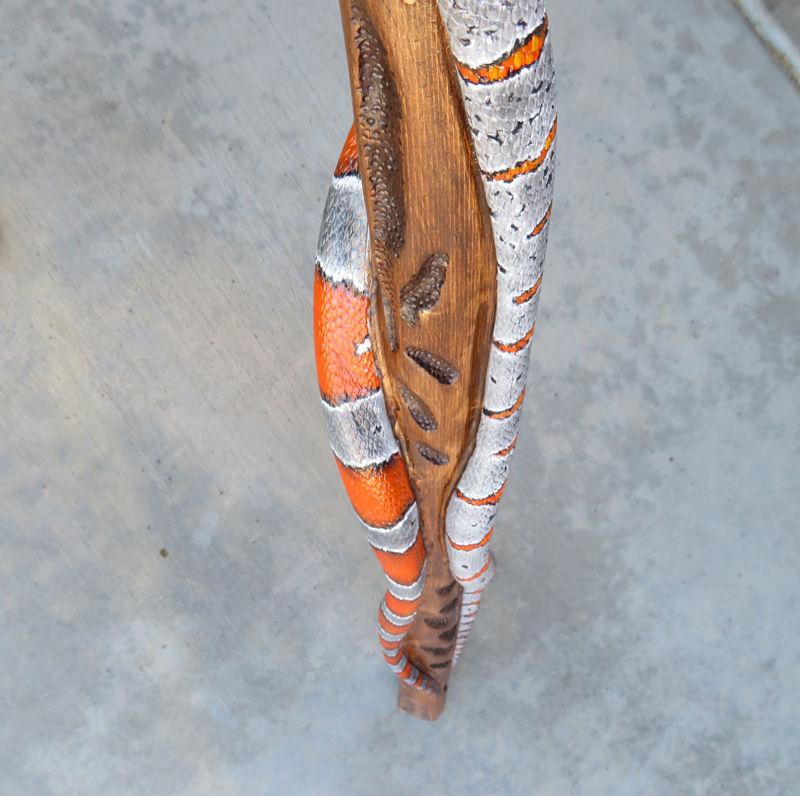 walkingstick-17-22.jpg