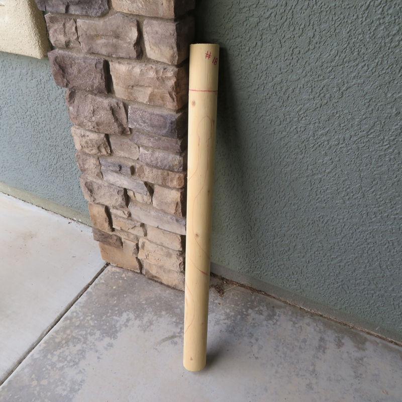 walkingstick-18-1.jpg