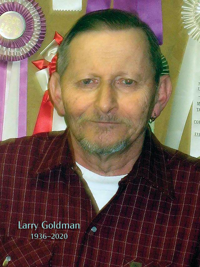 larry_goldman-06-2.jpg