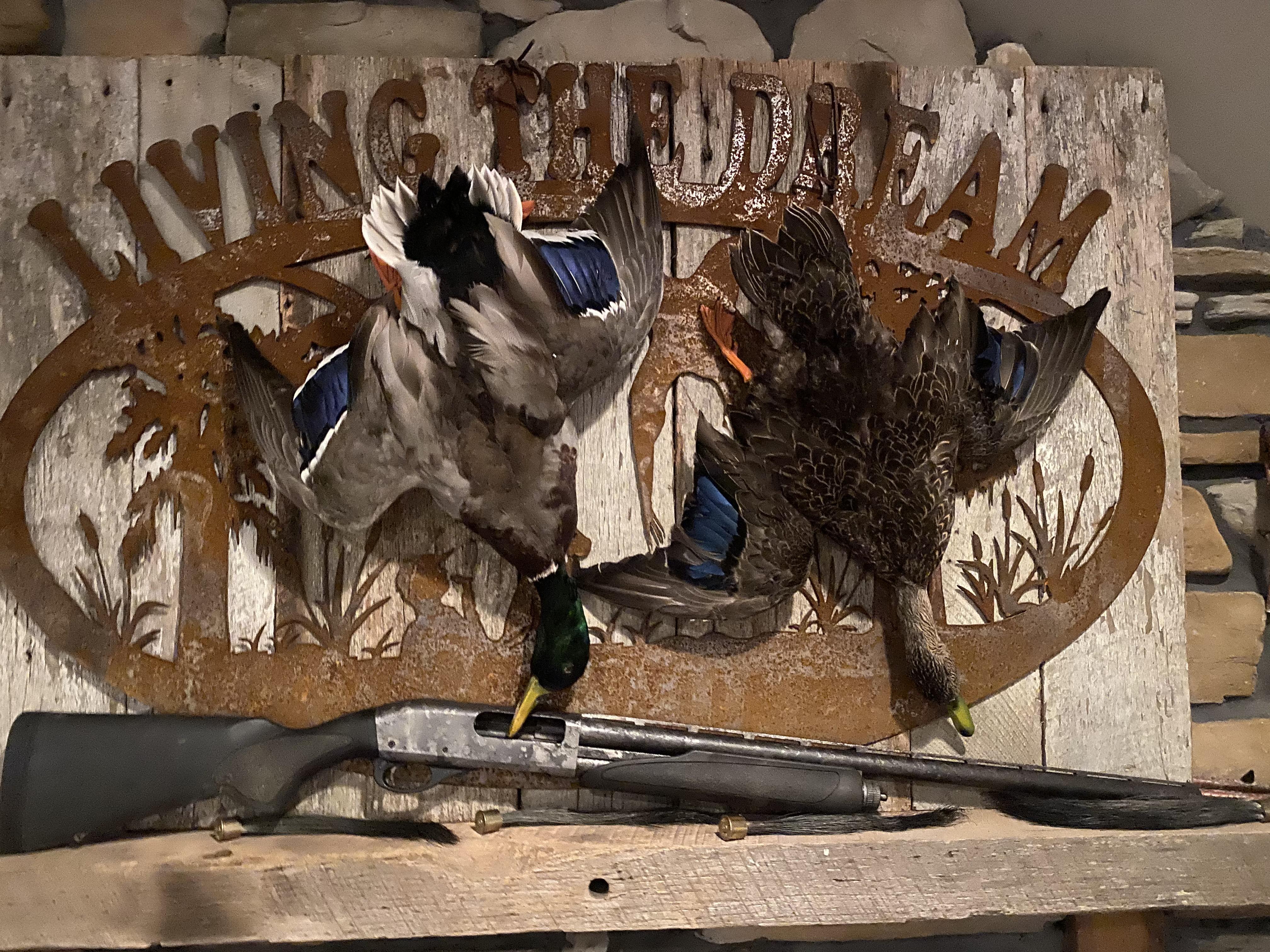 WS Birds.JPG
