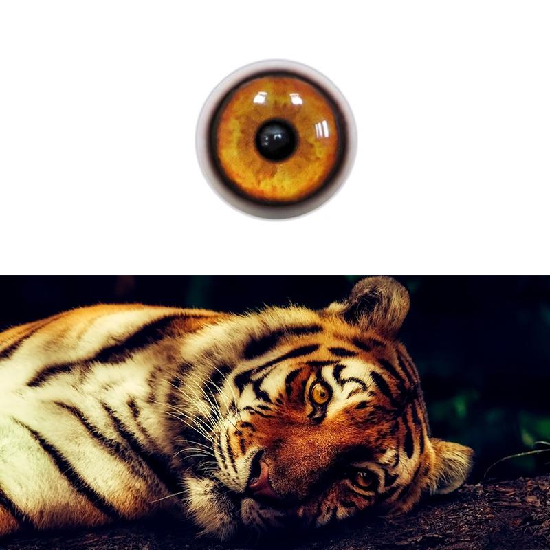 Tiger_SM.jpg