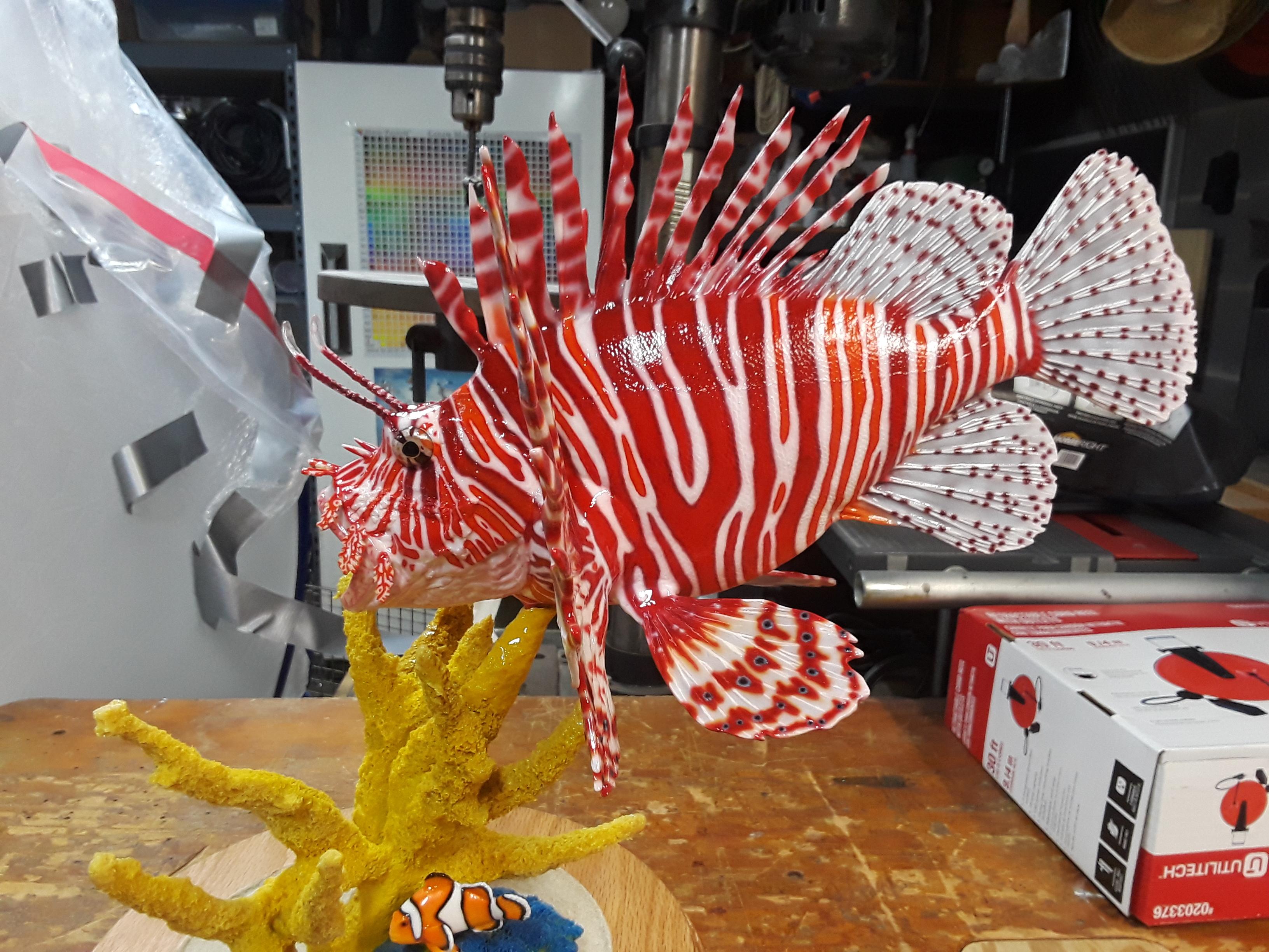 lionfish 6.jpg