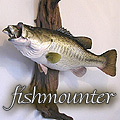 fishmounter