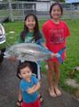 Hawaiian Game Fish