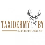 Eyes4Taxidermy