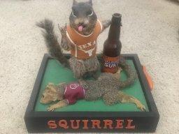 SquirrelNutz