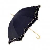 transparentumbrella
