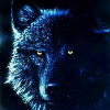 Lone Wolf AK