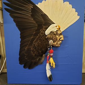 Bald Eagle War Bird By Randy Terry-Arkansas