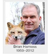 Brian Harness
