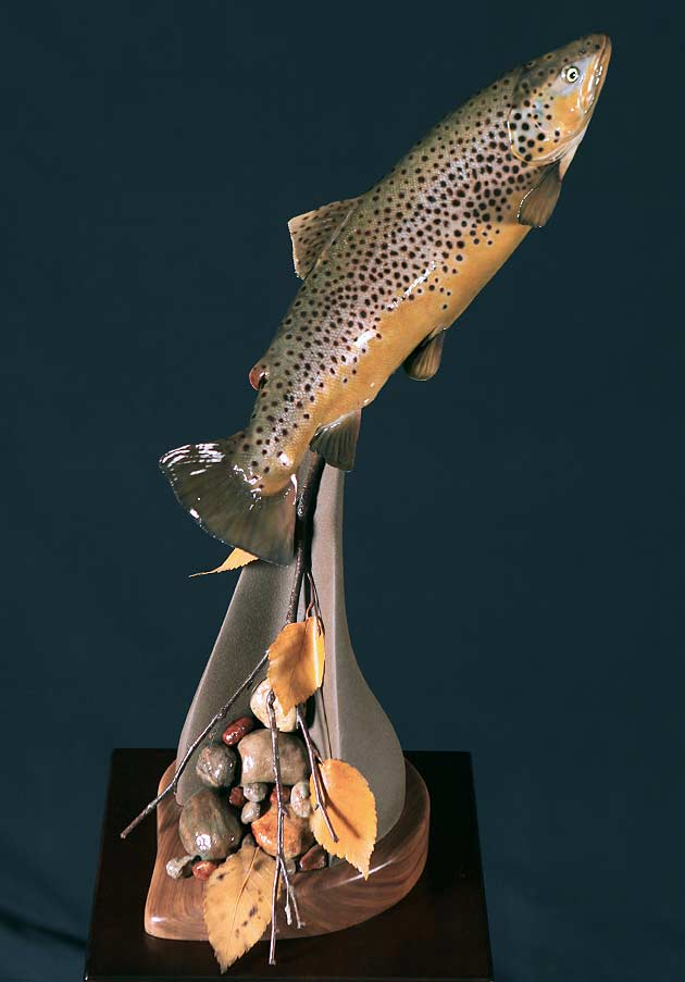 Tim Gorenchan's Brown Trout