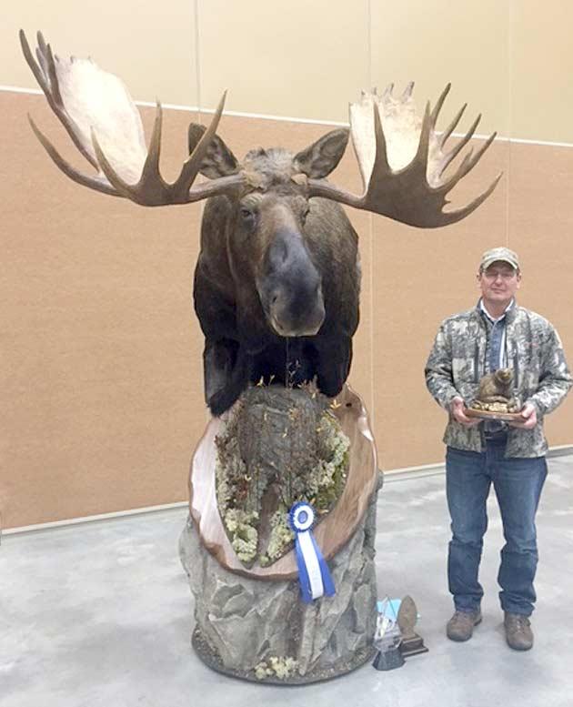 Allen Malaise's Alaskan Moose