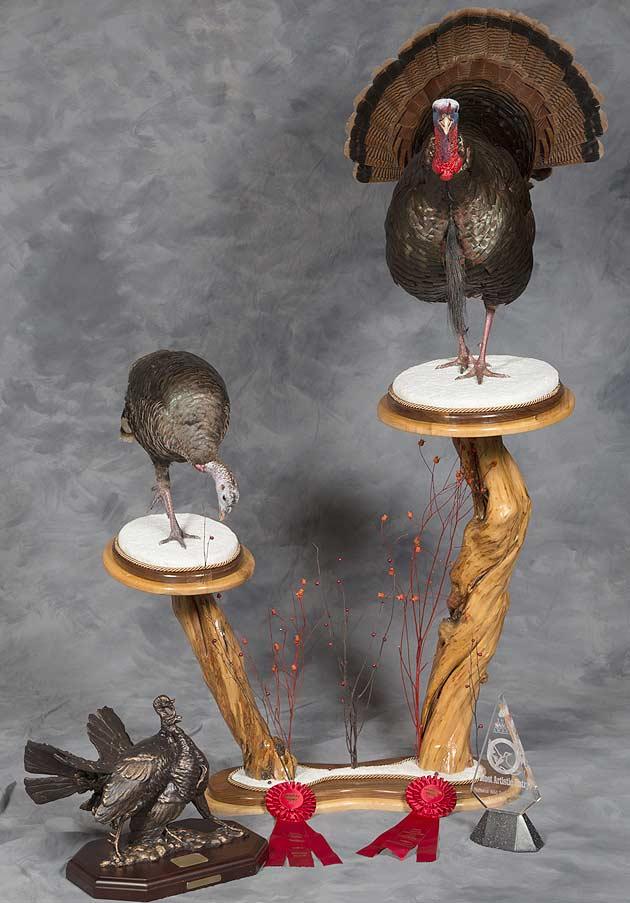 Troy Piotrowski's Wild Turkeys